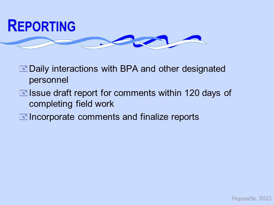 Proposal No. 35023 R EPORTING + Daily interactions with BPA and other designated personnel + Issue draft report for comments within 120 days of comple