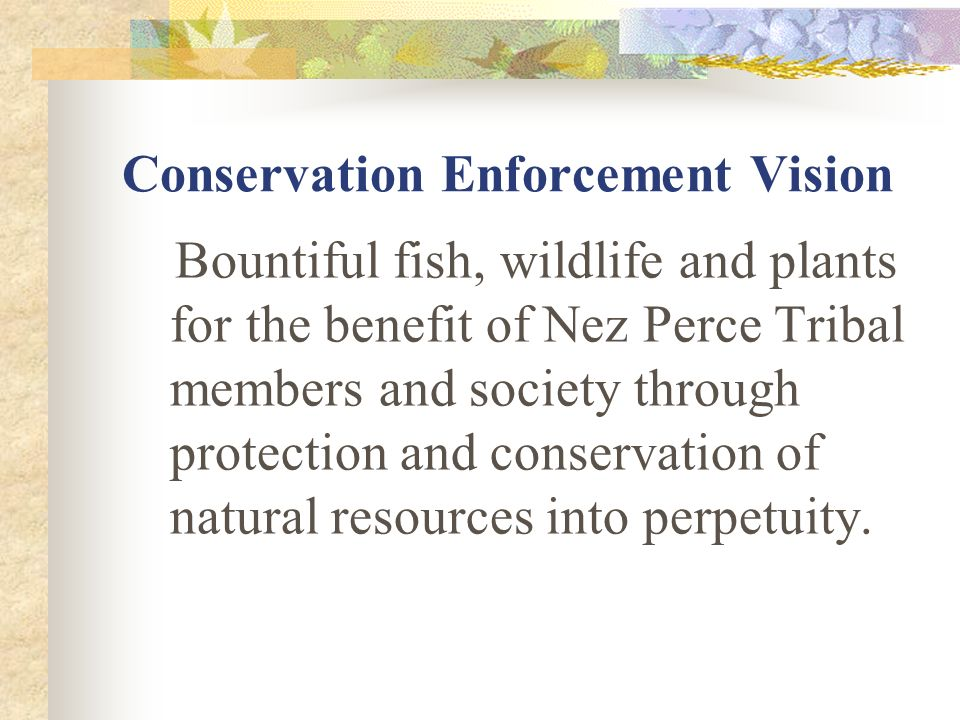 Conservation Enforcement Goals Enhance law enforcement for resource protection on the reservation and on Treaty lands with an emphasis on protection of ESA- listed species and critical habitats.