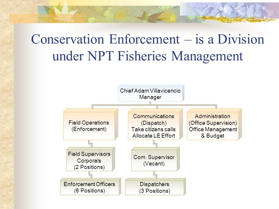 Conservation Enforcement – is a Division under NPT Fisheries Management