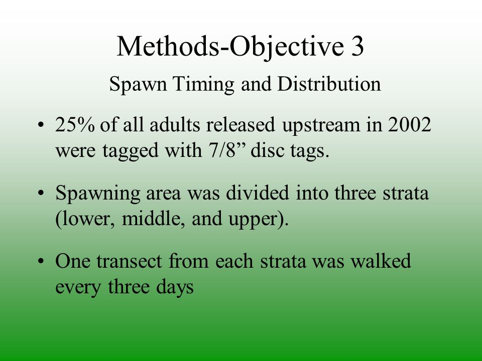 Methods-Objective 3 Spawn Timing and Distribution 25% of all adults released upstream in 2002 were tagged with 7/8 disc tags.