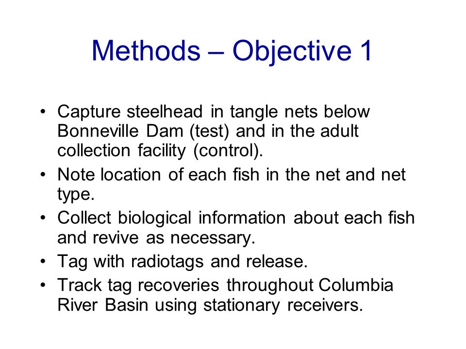 Methods – Objective 1 Capture steelhead in tangle nets below Bonneville Dam (test) and in the adult collection facility (control). Note location of ea