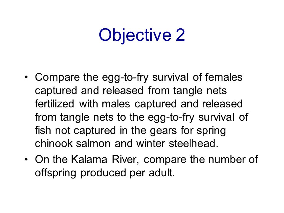 Objective 2 Compare the egg-to-fry survival of females captured and released from tangle nets fertilized with males captured and released from tangle nets to the egg-to-fry survival of fish not captured in the gears for spring chinook salmon and winter steelhead.