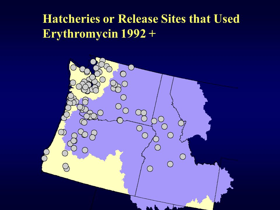 Hatcheries or Release Sites that Used Erythromycin 1992 +