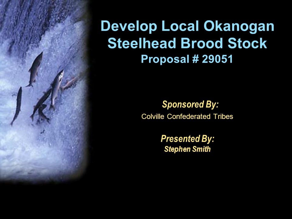 Develop Local Okanogan Steelhead Brood Stock Proposal # 29051 Sponsored By: Colville Confederated Tribes Presented By: Stephen Smith