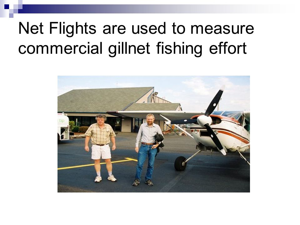 Net Flights are used to measure commercial gillnet fishing effort