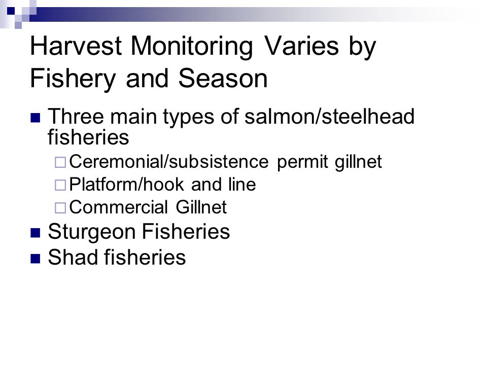 Harvest Monitoring Varies by Fishery and Season Three main types of salmon/steelhead fisheries Ceremonial/subsistence permit gillnet Platform/hook and line Commercial Gillnet Sturgeon Fisheries Shad fisheries