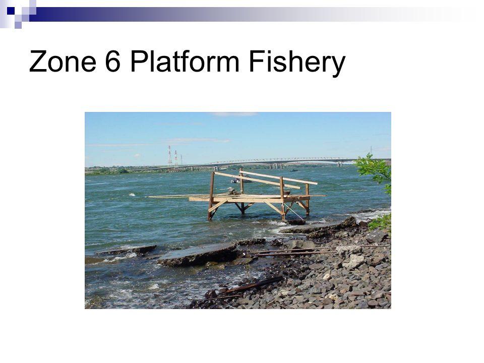 Zone 6 Platform Fishery