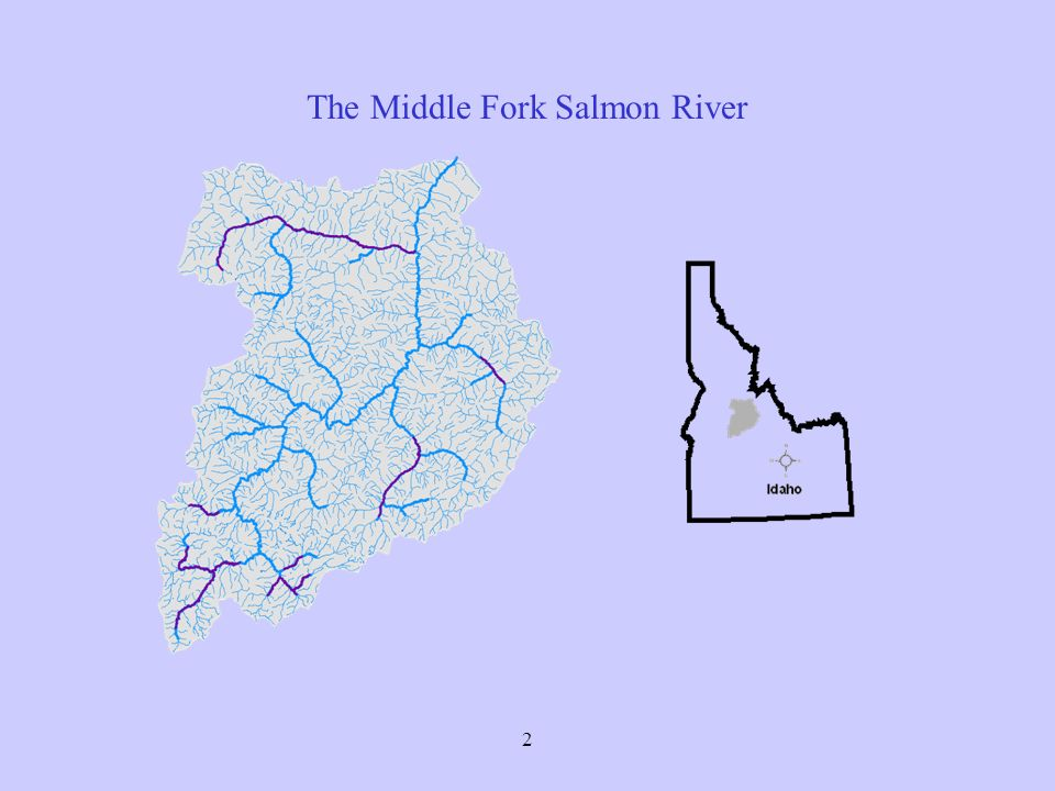 2 The Middle Fork Salmon River