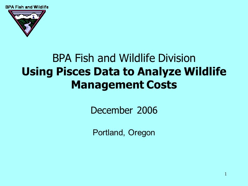 1 BPA Fish and Wildlife Division Using Pisces Data to Analyze Wildlife Management Costs December 2006 Portland, Oregon