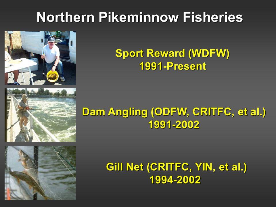 Northern Pikeminnow Fisheries Sport Reward (WDFW) 1991-Present Dam Angling (ODFW, CRITFC, et al.) 1991-2002 Gill Net (CRITFC, YIN, et al.) 1994-2002