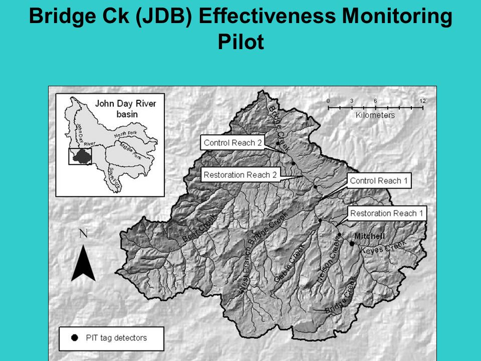 Bridge Ck (JDB) Effectiveness Monitoring Pilot