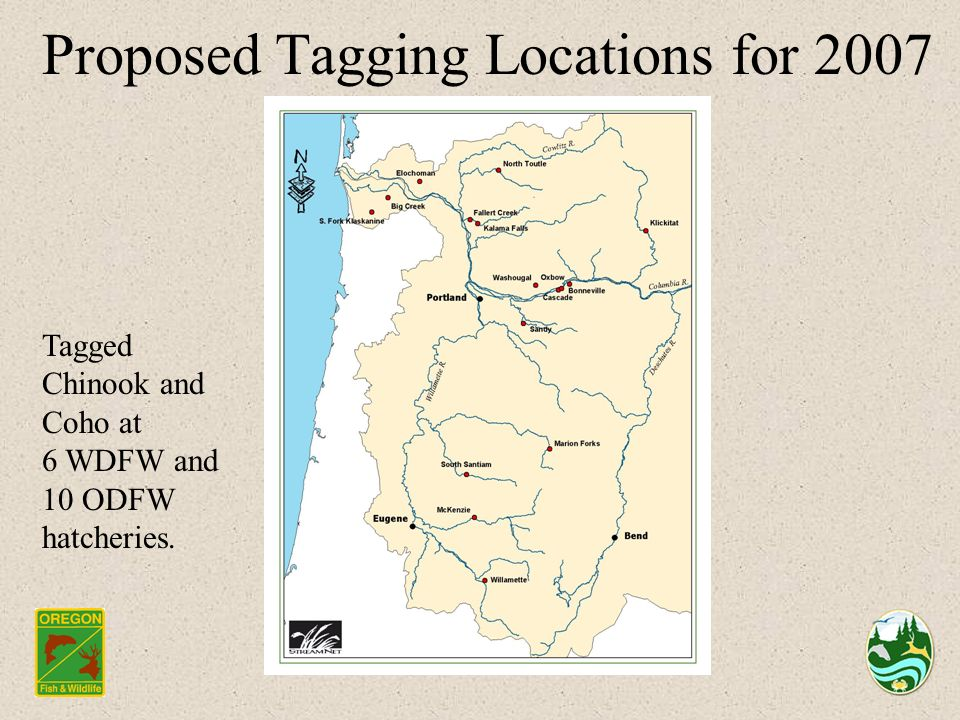 Proposed Tagging Locations for 2007 Tagged Chinook and Coho at 6 WDFW and 10 ODFW hatcheries.