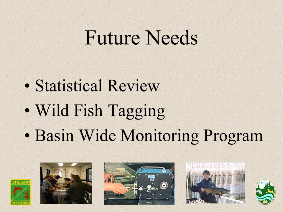 Future Needs Statistical Review Wild Fish Tagging Basin Wide Monitoring Program