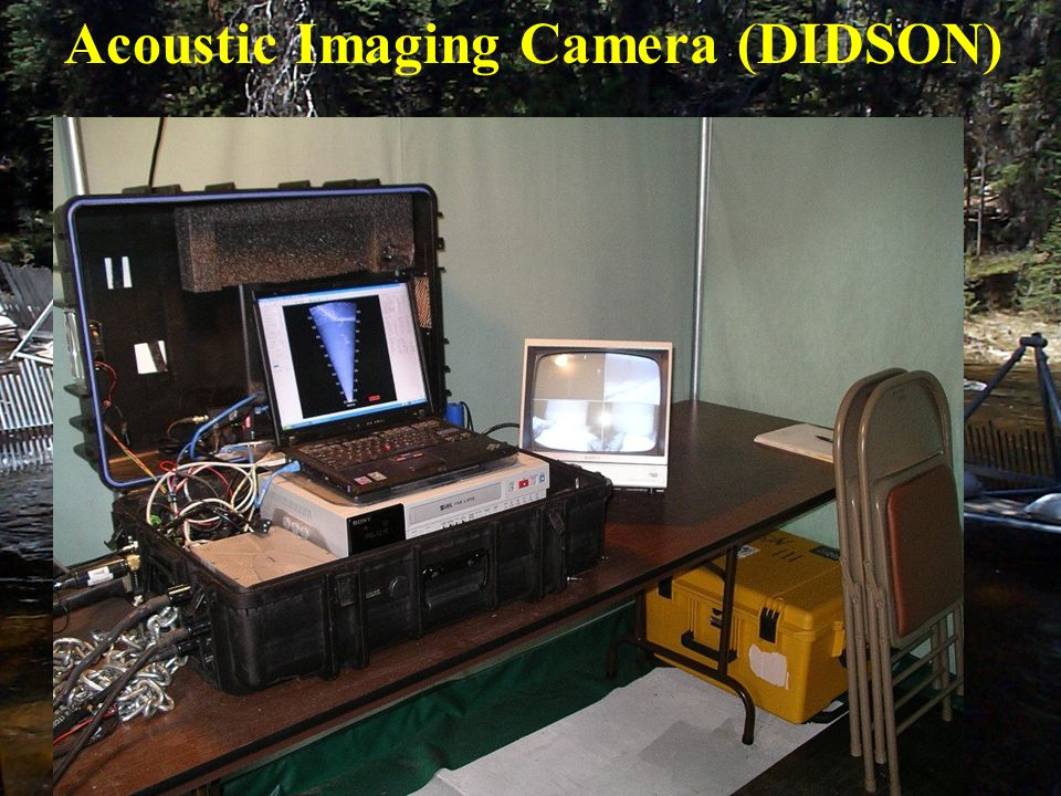 Acoustic Imaging Camera (DIDSON)