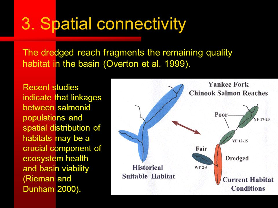 3. Spatial connectivity Recent studies indicate that linkages between salmonid populations and spatial distribution of habitats may be a crucial compo
