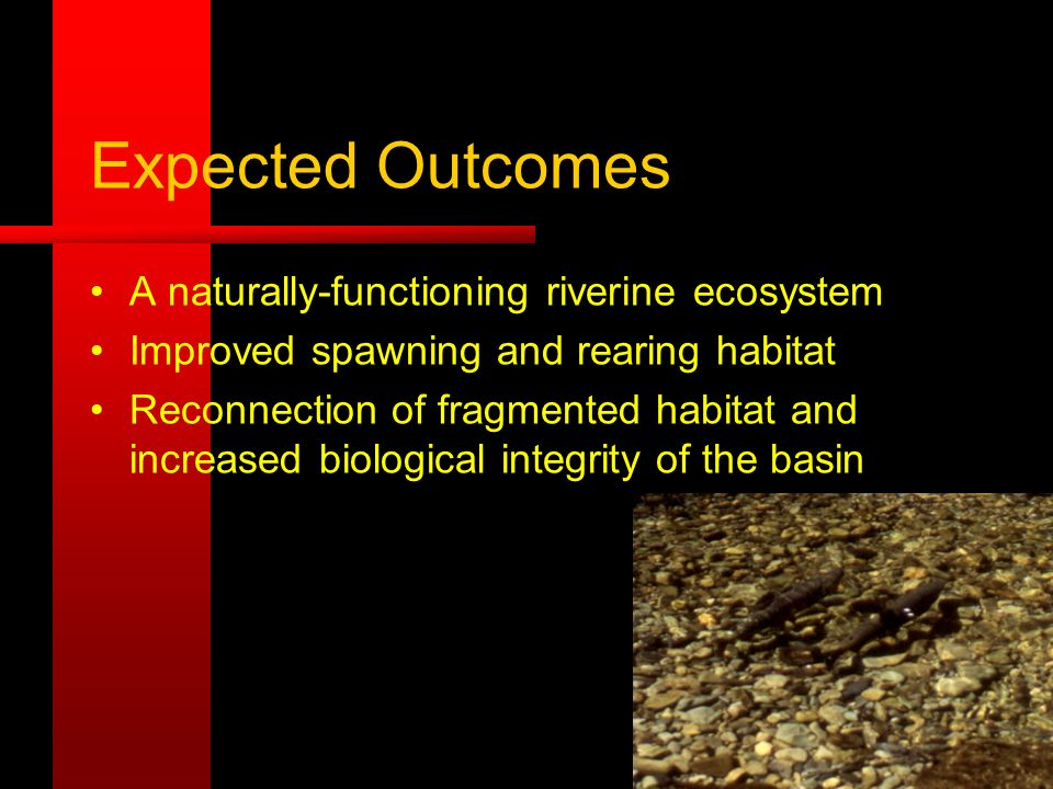 Expected Outcomes A naturally-functioning riverine ecosystem Improved spawning and rearing habitat Reconnection of fragmented habitat and increased biological integrity of the basin