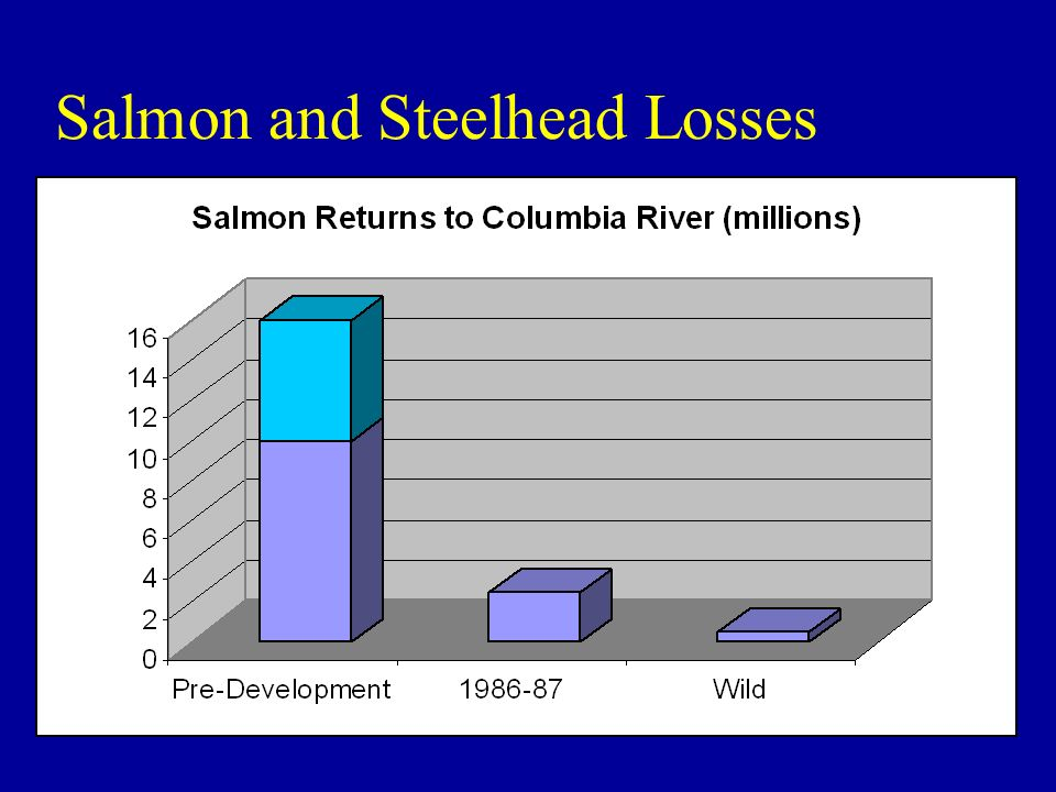 Salmon and Steelhead Losses