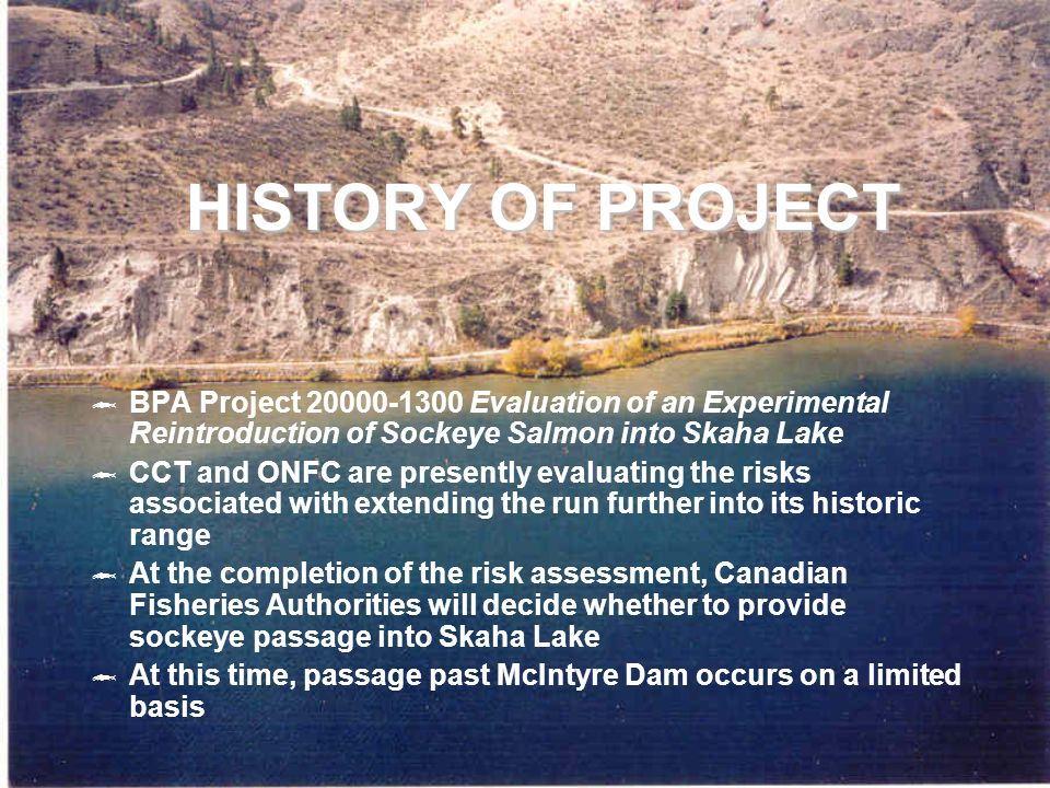 HISTORY OF PROJECT BPA Project 20000-1300 Evaluation of an Experimental Reintroduction of Sockeye Salmon into Skaha Lake CCT and ONFC are presently evaluating the risks associated with extending the run further into its historic range At the completion of the risk assessment, Canadian Fisheries Authorities will decide whether to provide sockeye passage into Skaha Lake At this time, passage past McIntyre Dam occurs on a limited basis