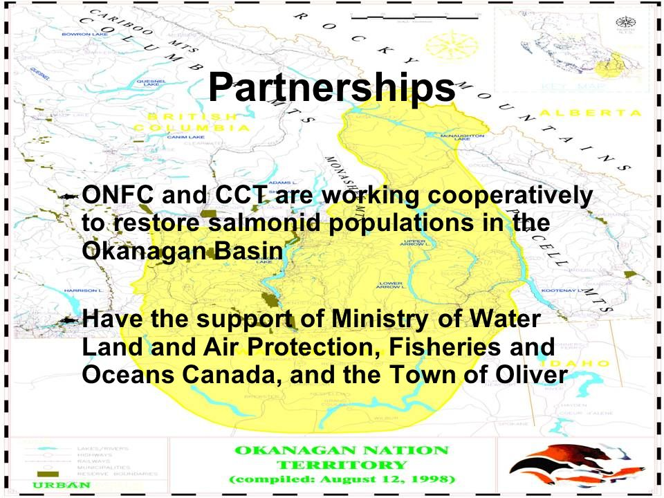 Partnerships ONFC and CCT are working cooperatively to restore salmonid populations in the Okanagan Basin Have the support of Ministry of Water Land and Air Protection, Fisheries and Oceans Canada, and the Town of Oliver