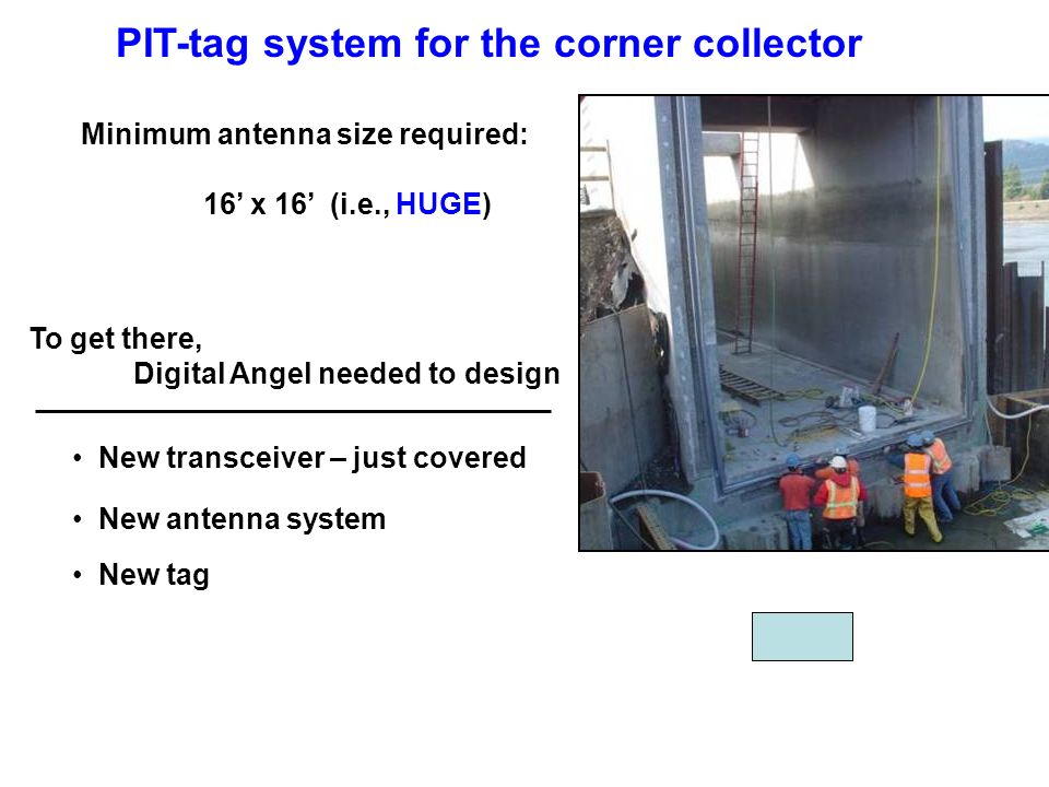 Minimum antenna size required: 16 x 16 (i.e., HUGE) To get there, Digital Angel needed to design New antenna system New transceiver – just covered New tag PIT-tag system for the corner collector