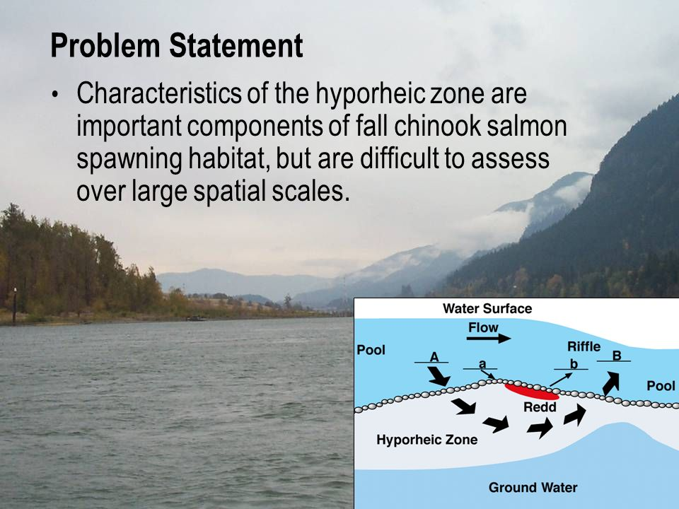 Problem Statement Characteristics of the hyporheic zone are important components of fall chinook salmon spawning habitat, but are difficult to assess over large spatial scales.