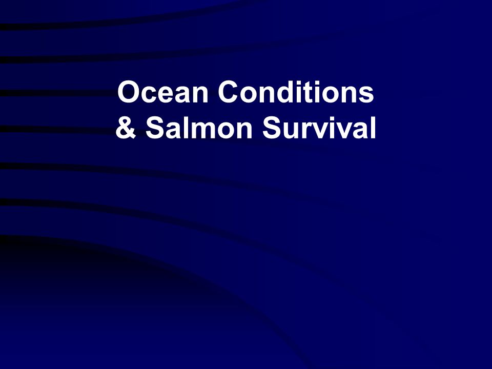 Ocean Conditions & Salmon Survival