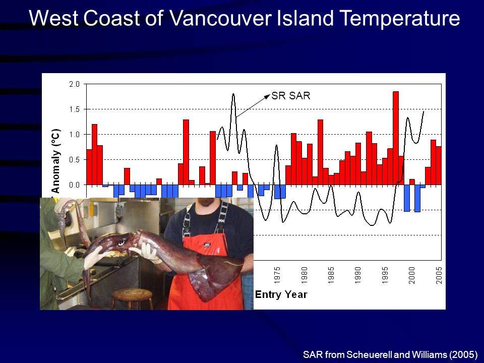 West Coast of Vancouver Island Temperature SR SAR SAR from Scheuerell and Williams (2005)