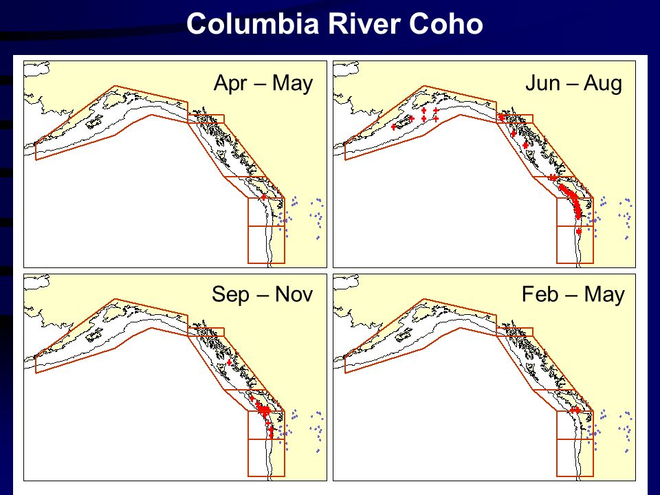 Columbia River Coho Apr – MayJun – Aug Sep – NovFeb – May