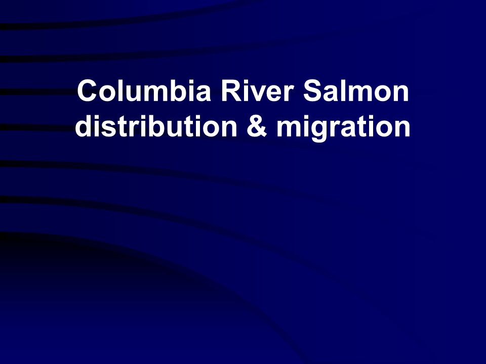 Columbia River Salmon distribution & migration