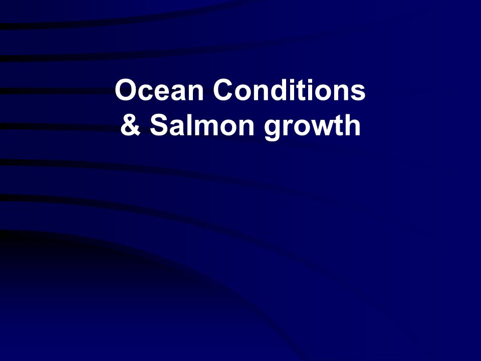 Ocean Conditions & Salmon growth