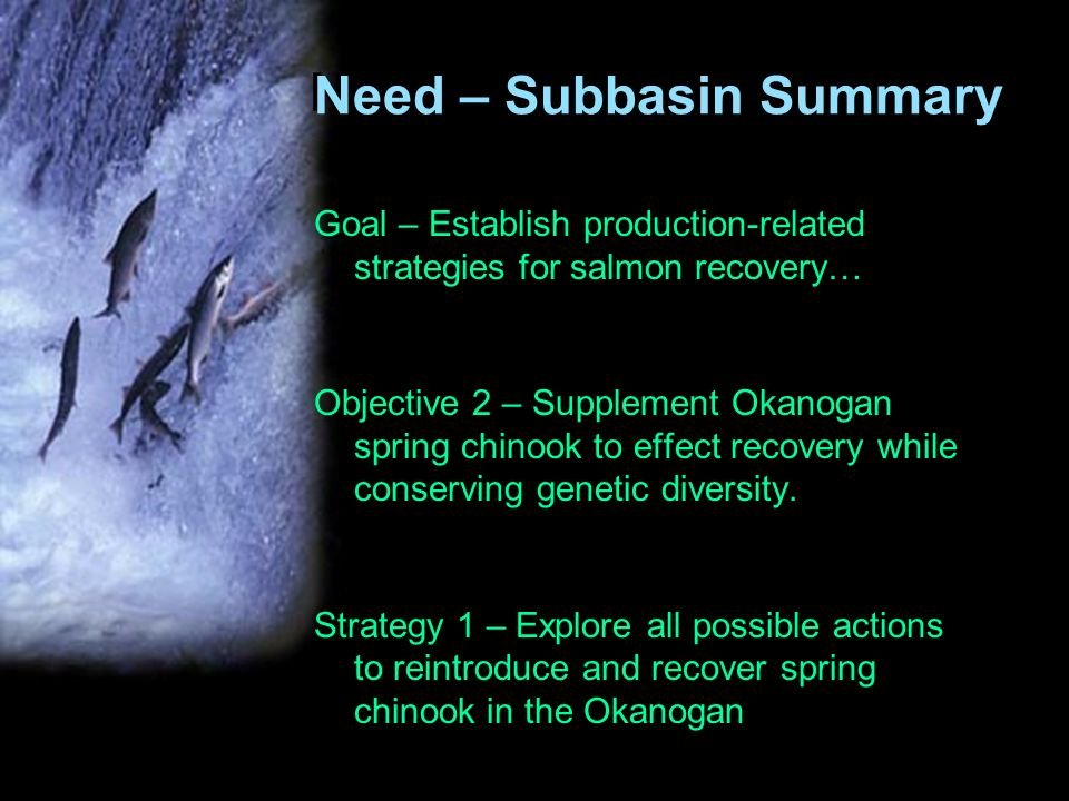 Need – Subbasin Summary Goal – Establish production-related strategies for salmon recovery… Objective 2 – Supplement Okanogan spring chinook to effect