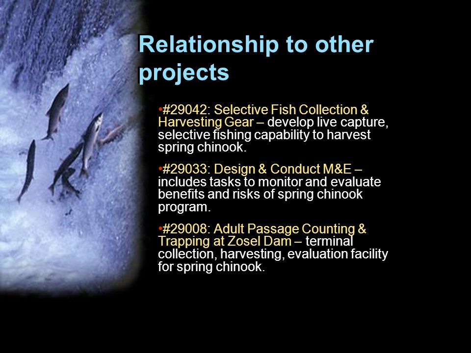 Relationship to other projects #29042: Selective Fish Collection & Harvesting Gear – develop live capture, selective fishing capability to harvest spr