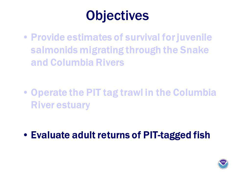 Objectives Provide estimates of survival for juvenile salmonids migrating through the Snake and Columbia Rivers Operate the PIT tag trawl in the Colum