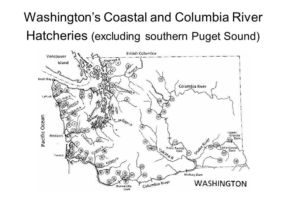 Washingtons Coastal and Columbia River Hatcheries (excluding southern Puget Sound)