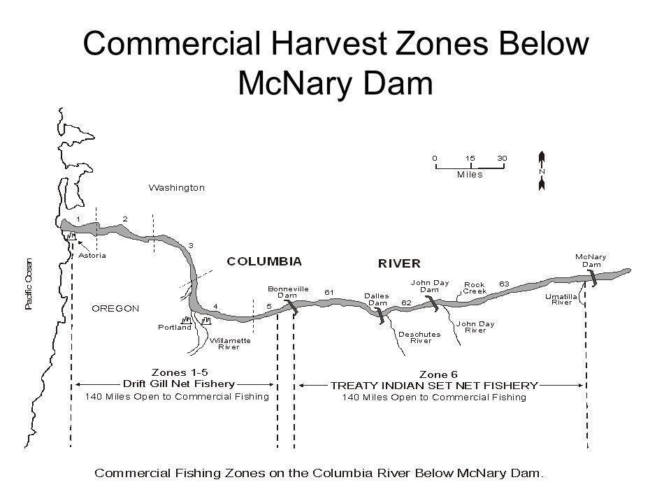 Commercial Harvest Zones Below McNary Dam