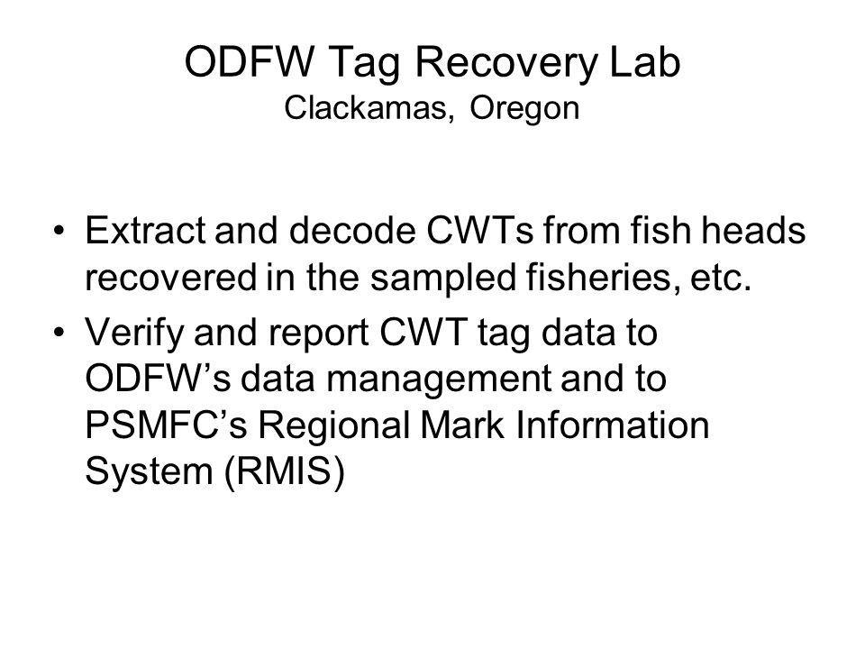 ODFW Tag Recovery Lab Clackamas, Oregon Extract and decode CWTs from fish heads recovered in the sampled fisheries, etc. Verify and report CWT tag dat