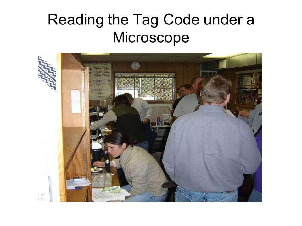Reading the Tag Code under a Microscope