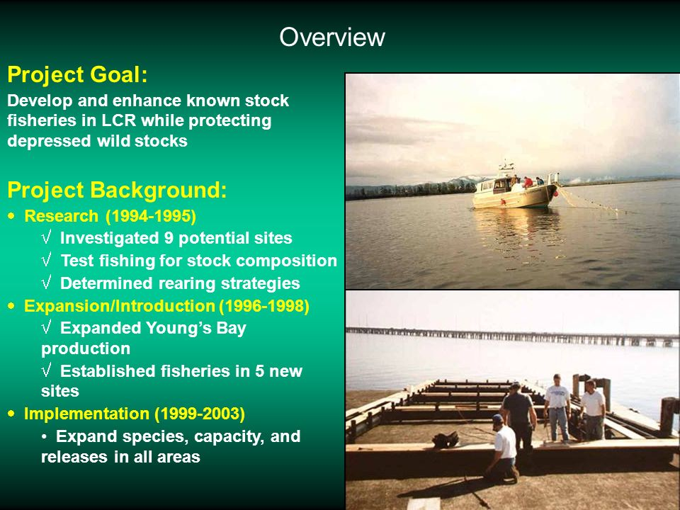 Project Goal: Develop and enhance known stock fisheries in LCR while protecting depressed wild stocks Project Background: Research (1994-1995) Investi