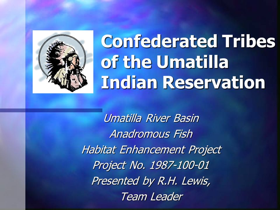Confederated Tribes of the Umatilla Indian Reservation Umatilla River Basin Anadromous Fish Habitat Enhancement Project Project No.