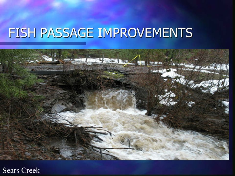 FISH PASSAGE IMPROVEMENTS Sears Creek