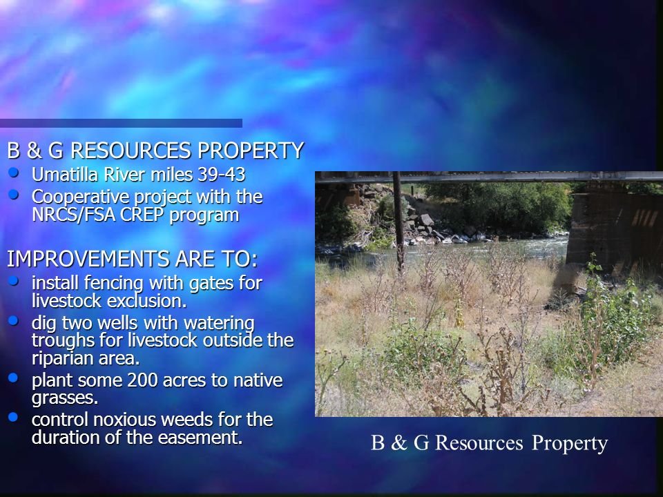 B & G RESOURCES PROPERTY Umatilla River miles 39-43 Umatilla River miles 39-43 Cooperative project with the NRCS/FSA CREP program Cooperative project with the NRCS/FSA CREP program IMPROVEMENTS ARE TO: install fencing with gates for livestock exclusion.