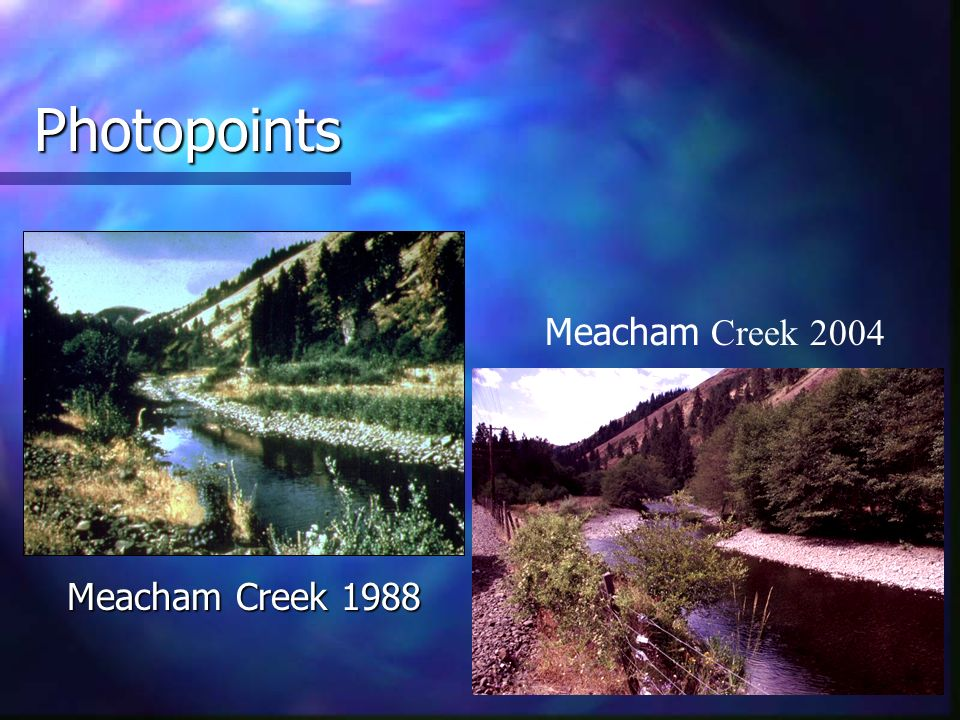 Photopoints Meacham Creek 1988 Meacham Creek 2004