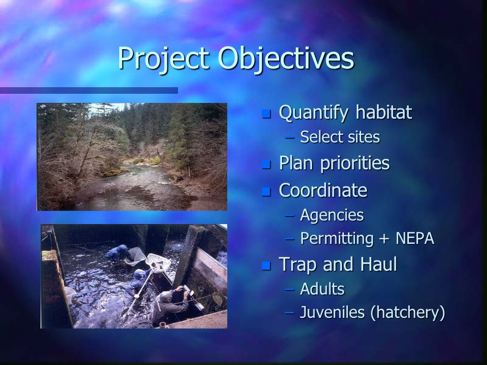 Project Objectives n Quantify habitat –Select sites n Plan priorities n Coordinate –Agencies –Permitting + NEPA n Trap and Haul –Adults –Juveniles (ha