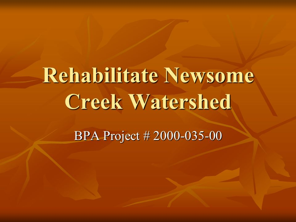 Rehabilitate Newsome Creek Watershed BPA Project # 2000-035-00