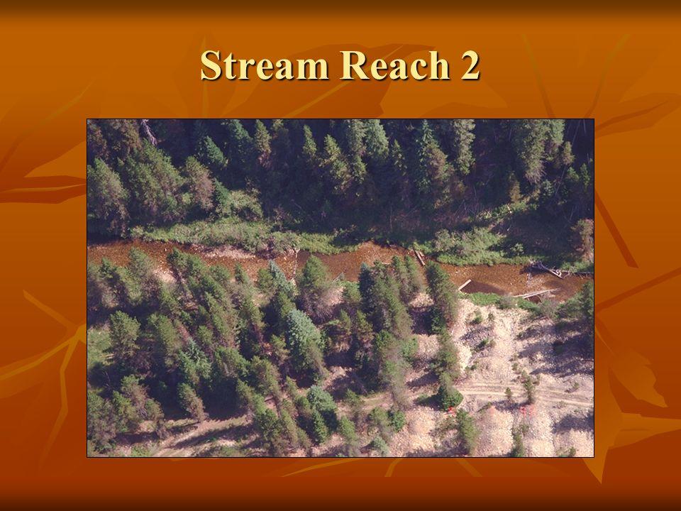 Stream Reach 2