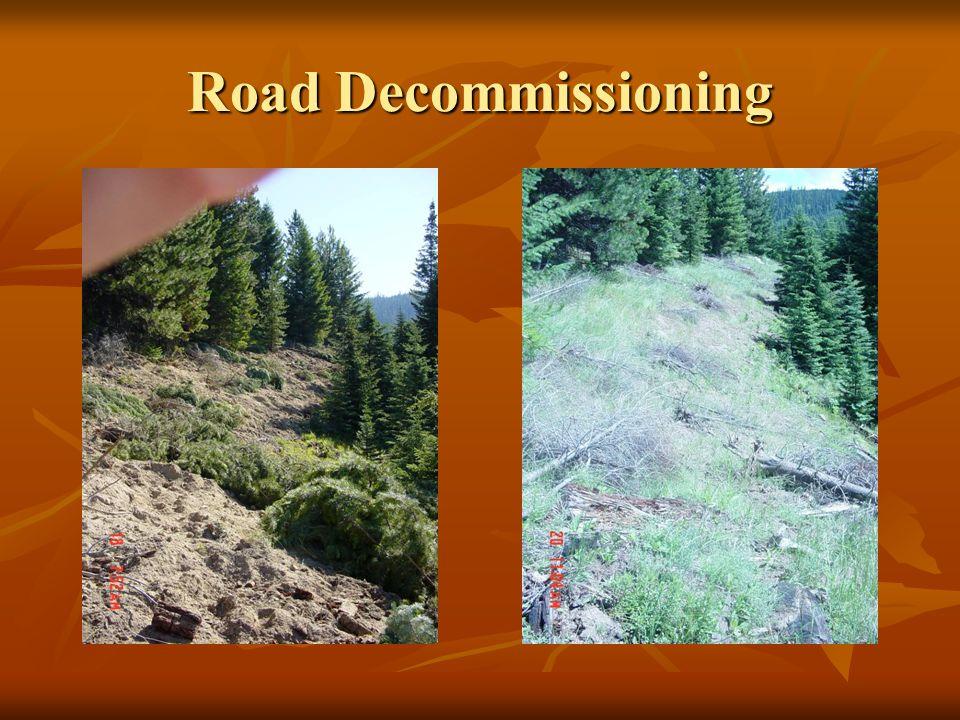 Road Decommissioning