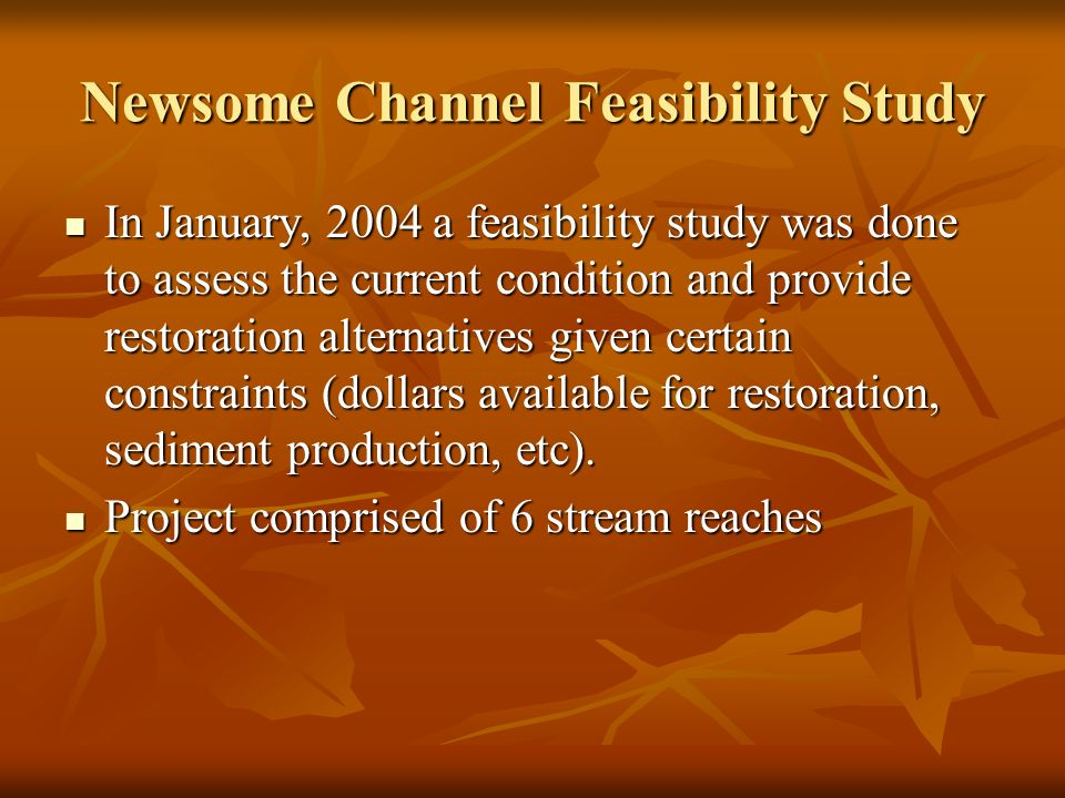 Newsome Channel Feasibility Study In January, 2004 a feasibility study was done to assess the current condition and provide restoration alternatives given certain constraints (dollars available for restoration, sediment production, etc).