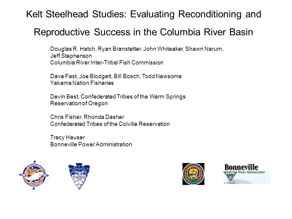 Kelt Steelhead Studies: Evaluating Reconditioning and Reproductive Success in the Columbia River Basin Douglas R.