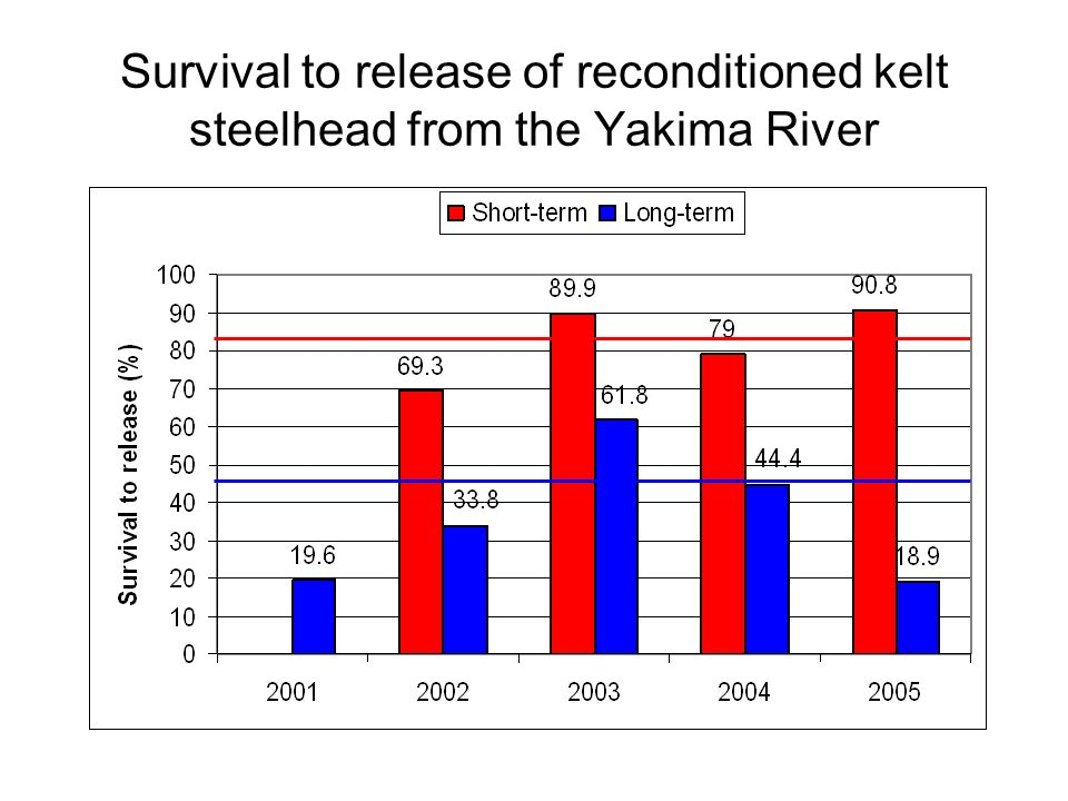 Survival to release of reconditioned kelt steelhead from the Yakima River