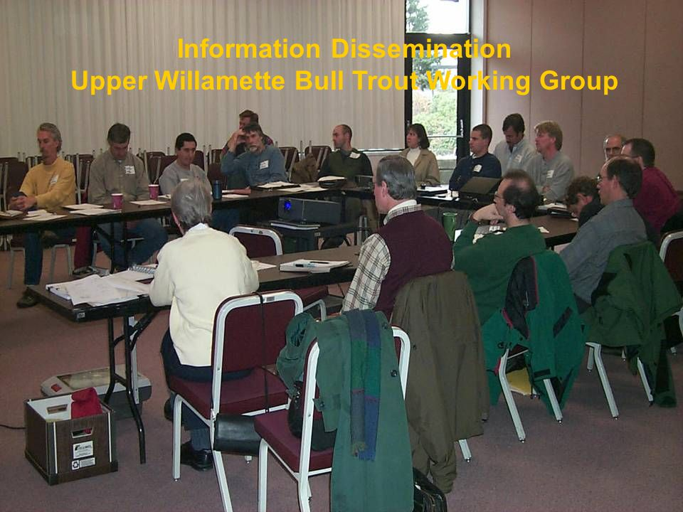 Information Dissemination Upper Willamette Bull Trout Working Group